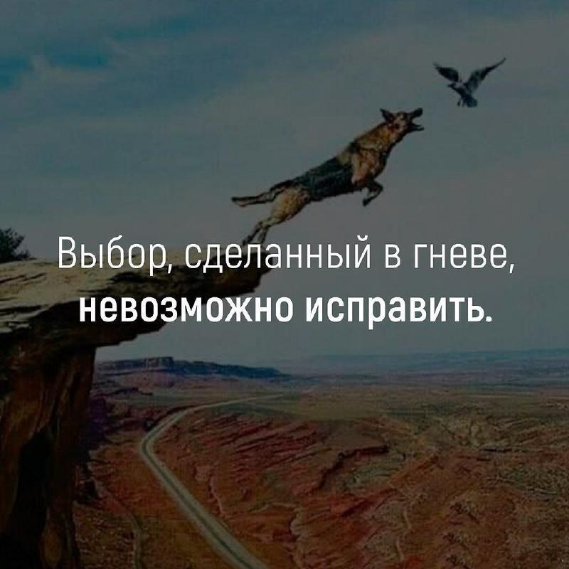 Не принимайте решения на эмоциях