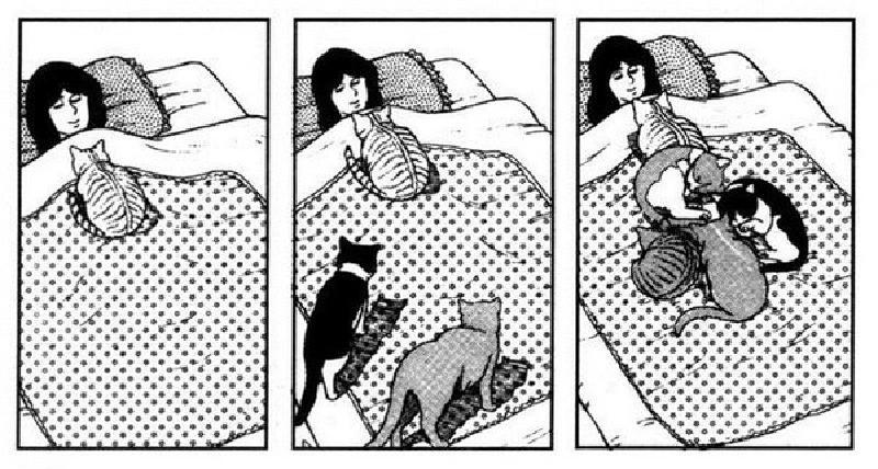 Да, котика завести тоже можно, даже двух